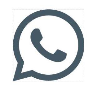 phone.jpg (300×283)